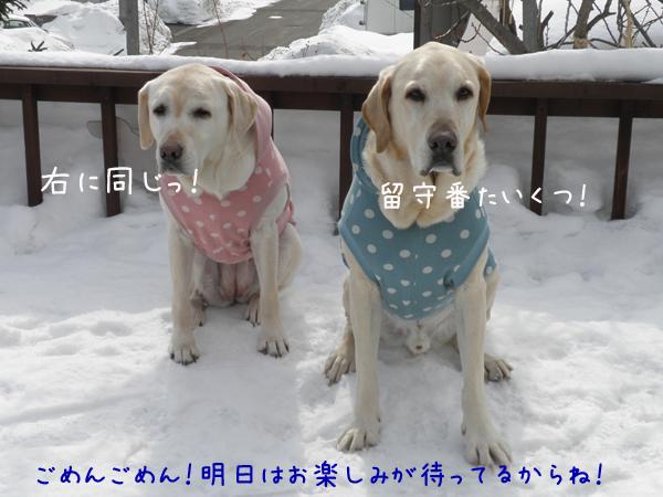 hutari_20120304211058.jpg