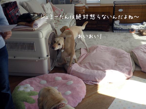 iti1_20120328213705.jpg