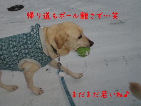 kaerimiti_20111202223506.jpg