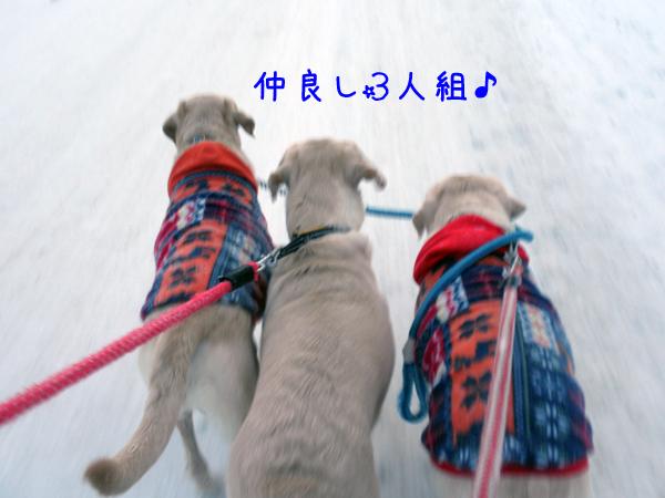 kaerimiti_20120125204945.jpg