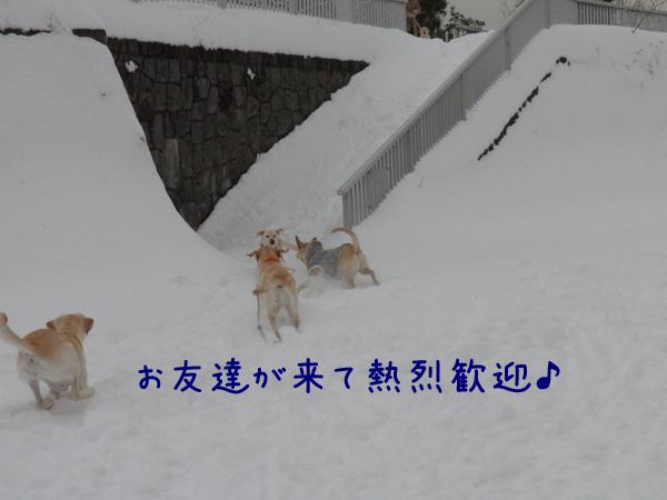 kangei.jpg