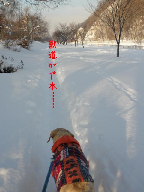kasenziki_20120108222852.jpg