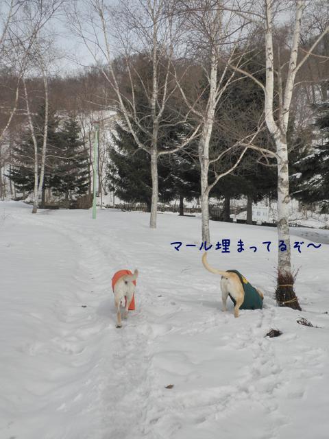 kouen1_20120401172746.jpg