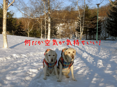 kouen_20111208213548.jpg