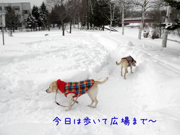 kouen_20120205222015.jpg