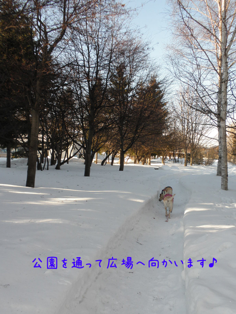 kouen_20120209212239.jpg