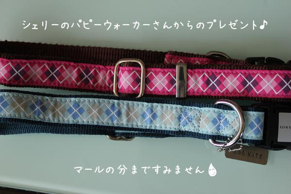 kubiwa1_20120402180740.jpg