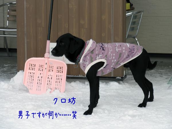 kurobou_20120109210404.jpg