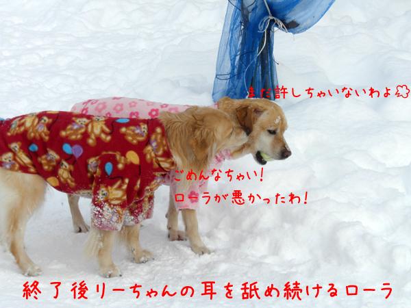 lee2_20120108222014.jpg