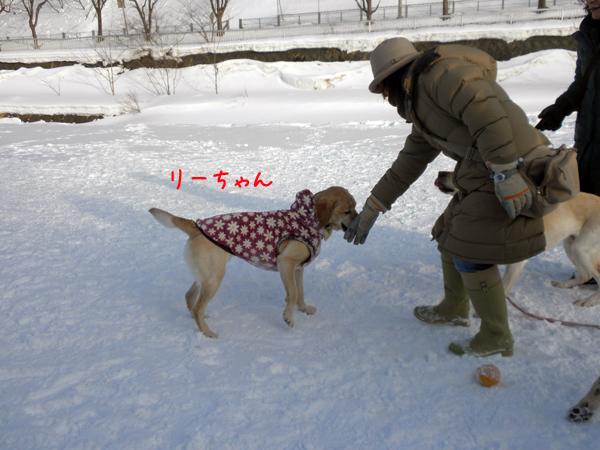 lee2_20120213214108.jpg