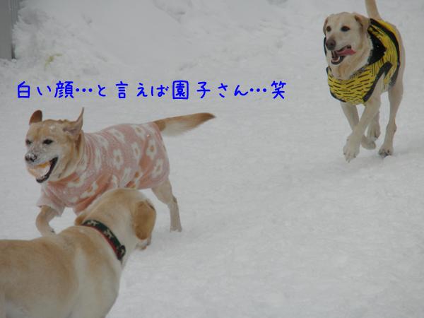 lee_20120128220444.jpg