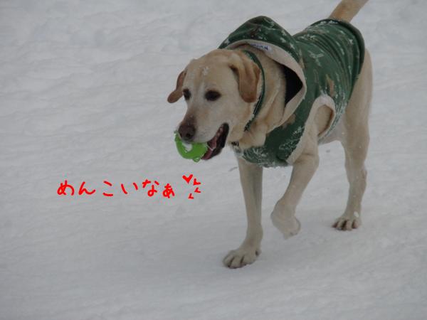 maru1_20111231231036.jpg