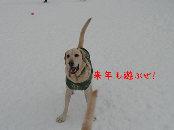 maru2_20111231231035.jpg