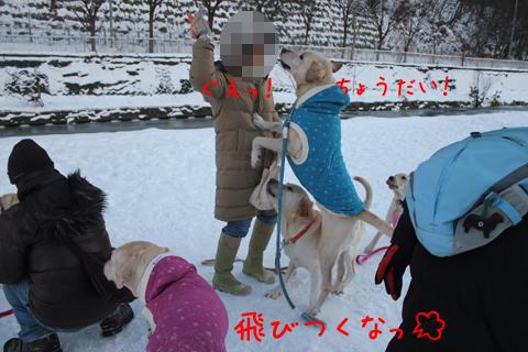 maru_20111219223252.jpg