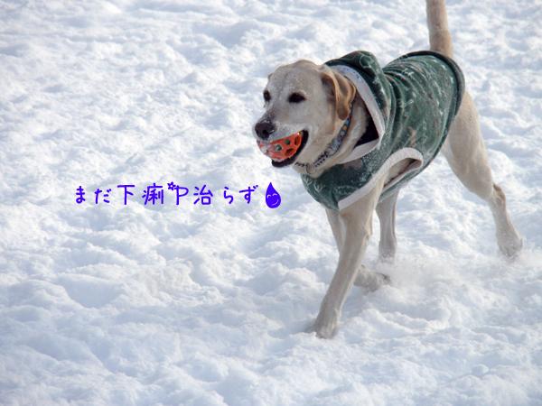 maru_20120218175302.jpg