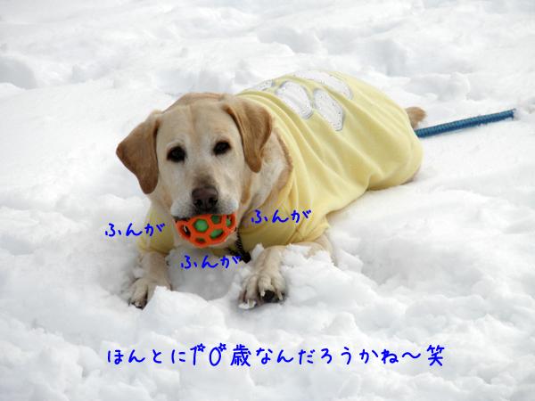 maru_20120229212333.jpg