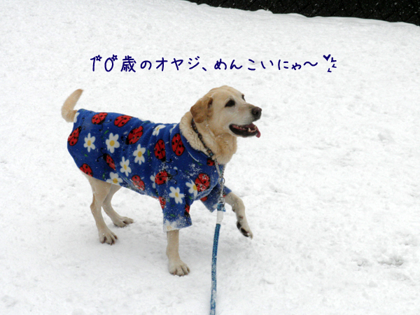 maru_20120324233902.jpg