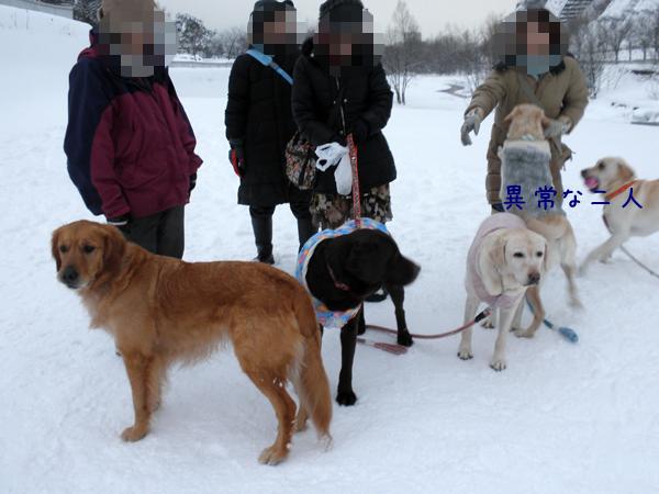 marudai2_20120106191439.jpg