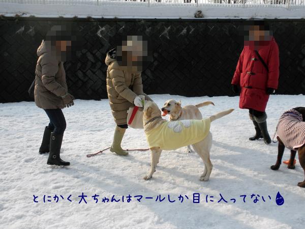 marudai2_20120322212224.jpg