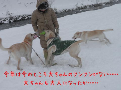 marudai_20111212175421.jpg