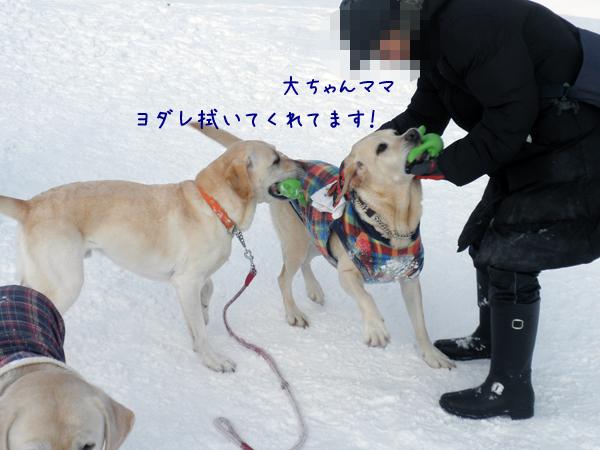 marudai_20120227212008.jpg