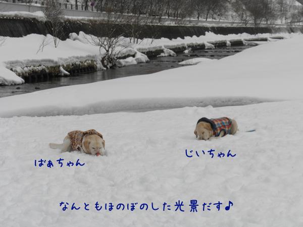 marukeri_20120325174408.jpg