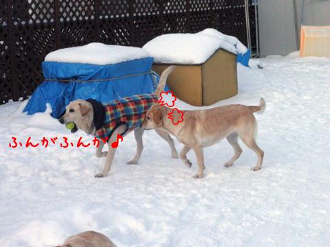 marulee_20111208213940.jpg