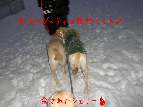 marunotei_20111209213502.jpg