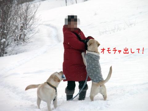 marunoteimama_20111213233211.jpg