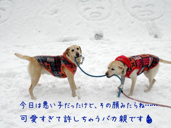 marusyeri2_20120225231010.jpg