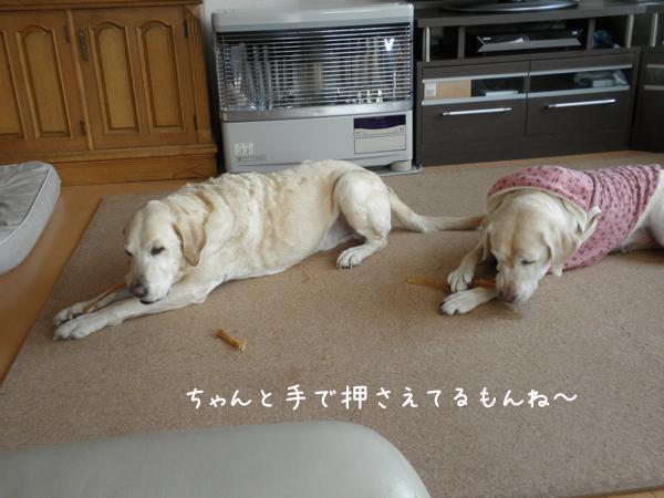 marusyeri_20120303204206.jpg