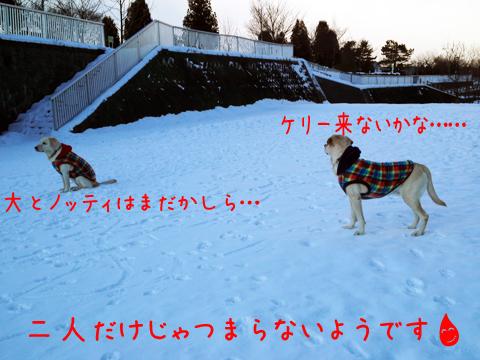 matu_20111221005338.jpg