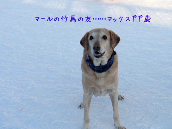 max_20120209212237.jpg