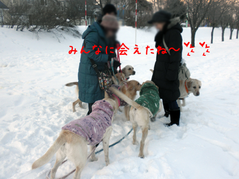 minna_20111209212947.jpg