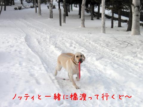 notei_20111209212948.jpg