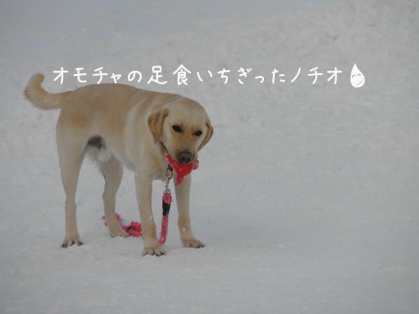 notei_20120118214504.jpg