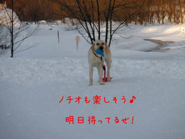 notei_20120121004558.jpg