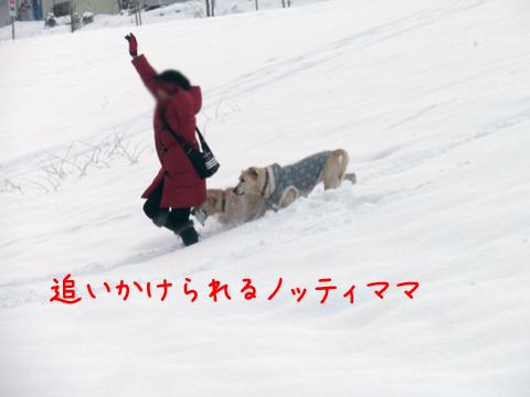 noteimama_20111213233212.jpg