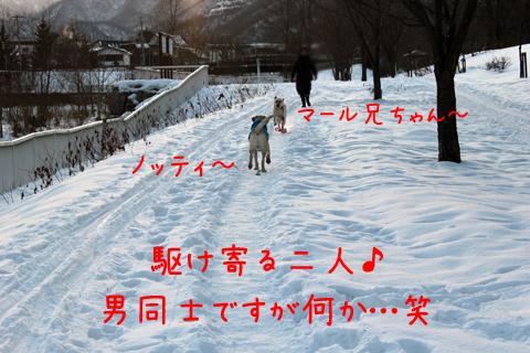 noteimaru_20111219223257.jpg