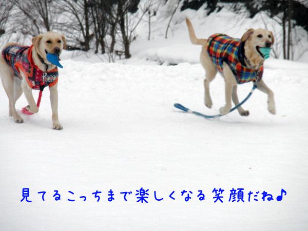 noteimaru_20120121235258.jpg