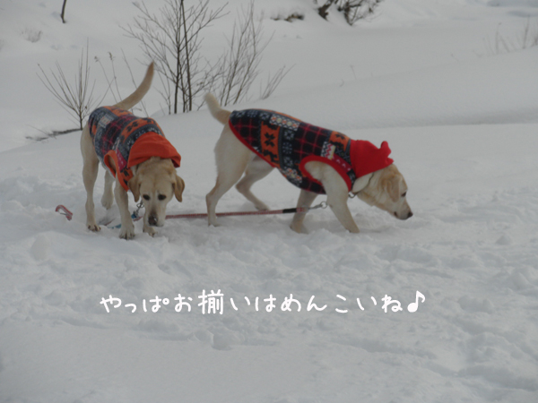 osoroi_20120123220654.jpg