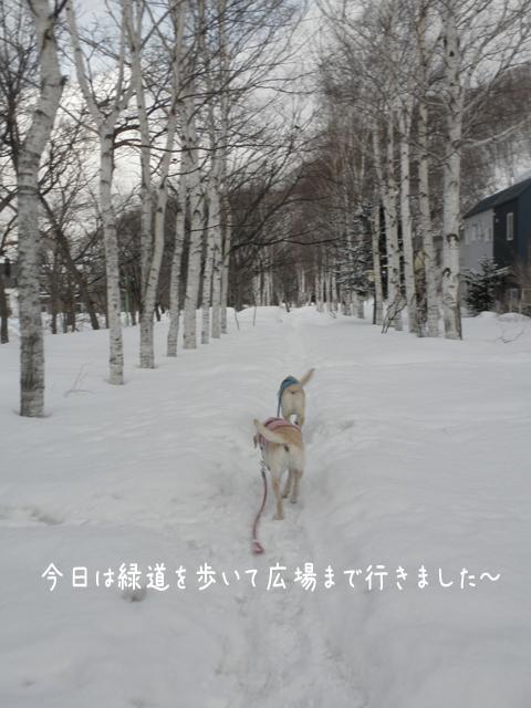 ryokudou_20120308212021.jpg