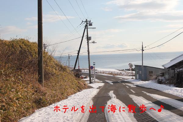 sanpo1_20120117213722.jpg