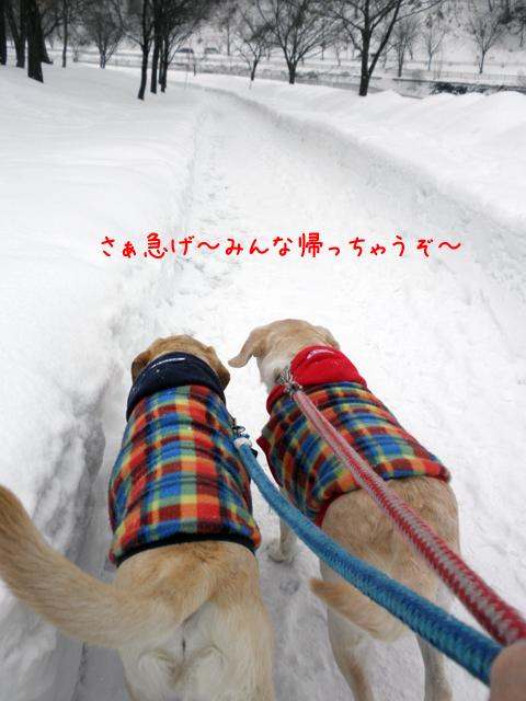 sanpo1_20120319214533.jpg
