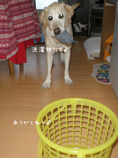 sentaku1_20120328220241.jpg