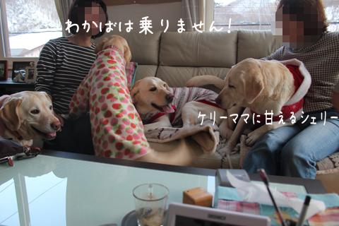 sofa_20111207213653.jpg