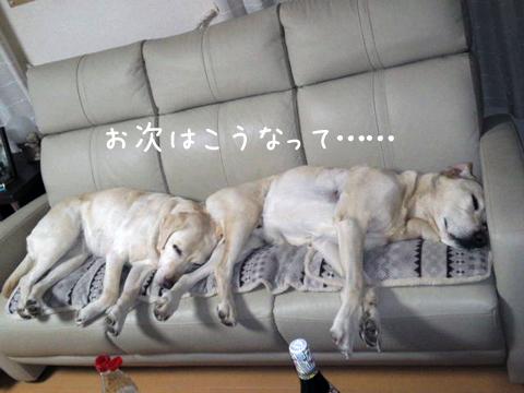 sofa_20111211221408.jpg