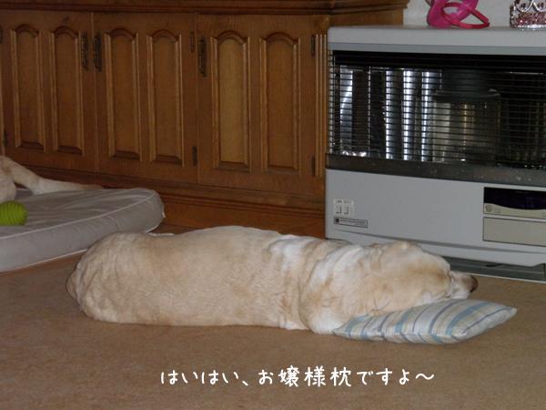 syerimakura_20120404001457.jpg