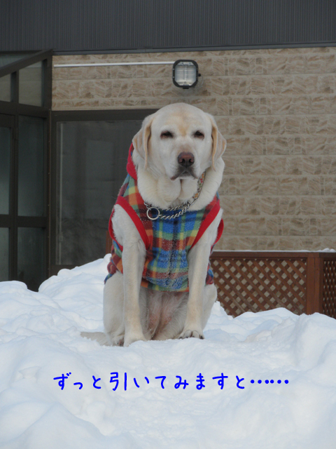 yama1_20120124204242.jpg
