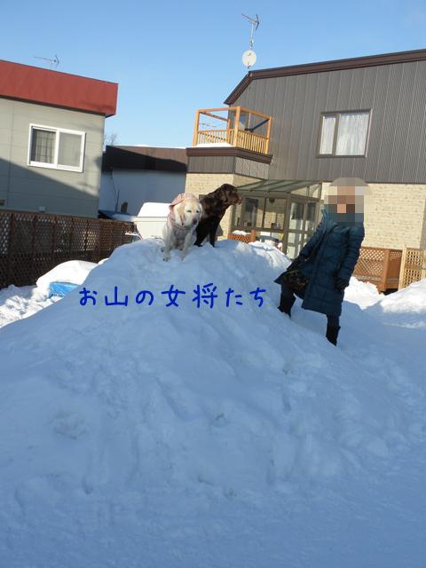yukiyama_20120208203614.jpg